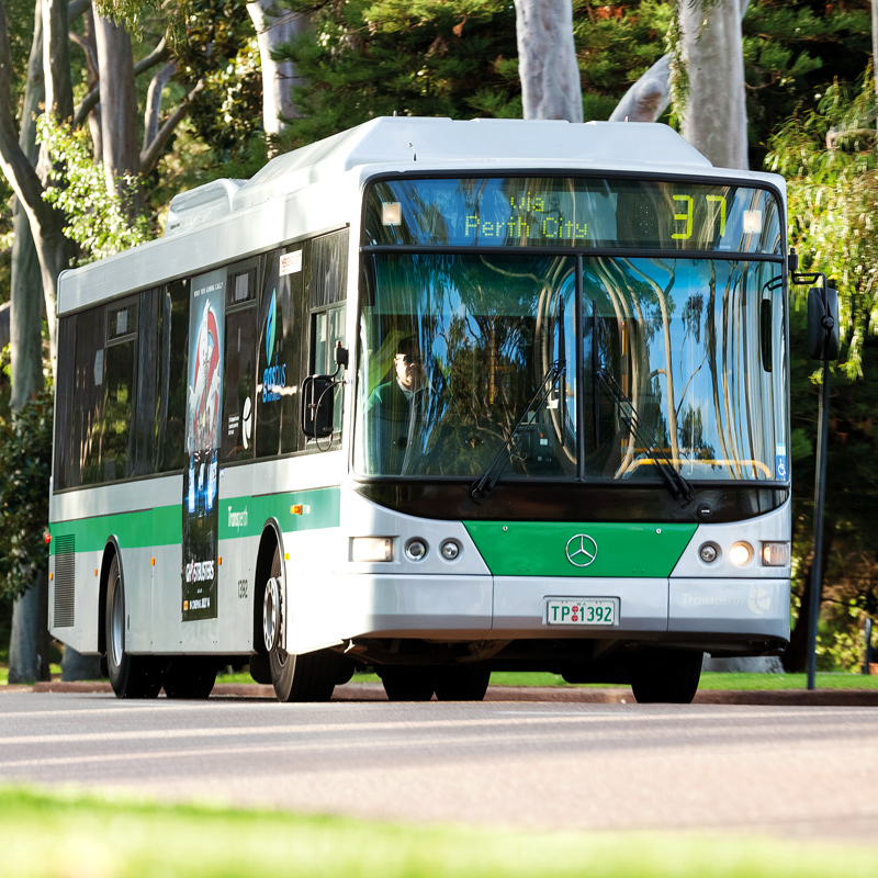 Transperth bus